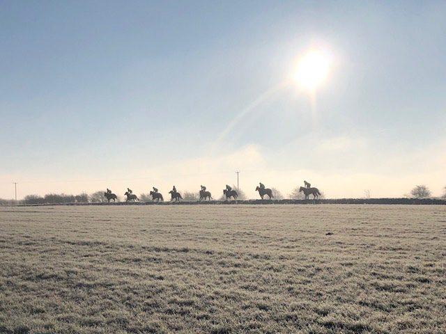 Crisp morning on the gallops